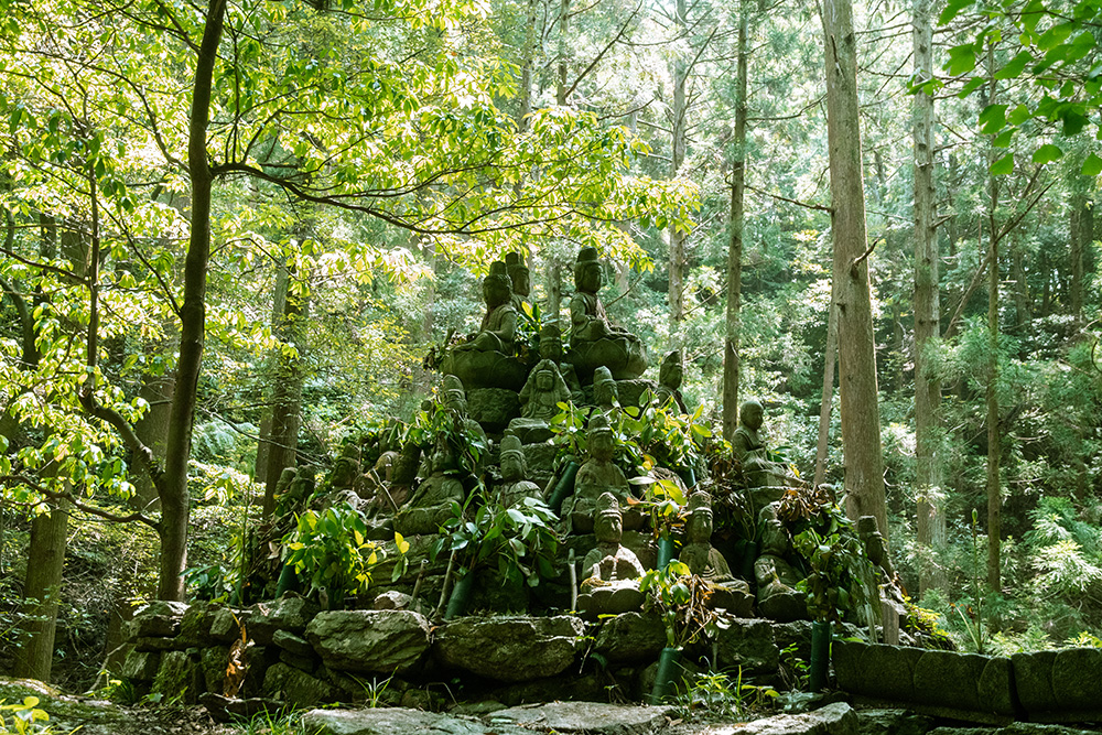 Hotoke Ishi: The Story Behind this Mysterious Collection of Buddha Statues in the Forest